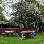 beneath a canopy of blossom, The Dolphin beer garden is the perfect place to relax