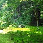 清水寺本坊庭園 苔がとてもきれい!