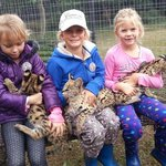 Delighted children with baby servals