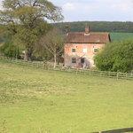 Oak Tree Farm
