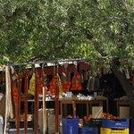 the roadside stall