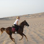 Gamila Stable Club Horse and Camel Riding