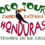 Los tours ofrecidos