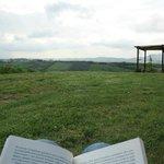 Giardino: sdraio per leggere un buon libro con tutta la pace intorno