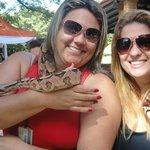 Cobra Jiboia para os hospedes conhecerem e para fotos