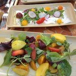 Beet salad and fresh ceviche