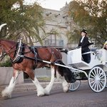 *Tucson Weddings* call for more information