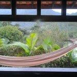 Vista da janela do quarto 6