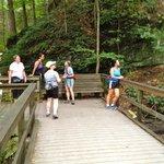 Needle Falls Hike