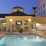 Hilton Garden Inn Clovis Hotel Pool