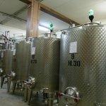 La cantina dove riposano gli ottimi vini del Colombaio