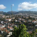 View of Funchal from the garden