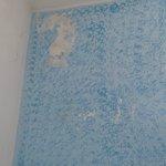 pittura cadente nel salone