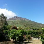 View of the vulcano (from garden)