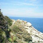sentieri sul mare