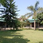 Tiger Residency