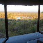 View out window of Safari Lodge room.