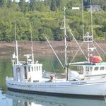 Two of the fishing boats of Blacks Harbour