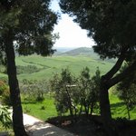 Photo of Agriturismo Mannaioni - Dolce Campagna