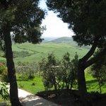 Photo of Agriturismo Mannaioni - Dolce Campagna