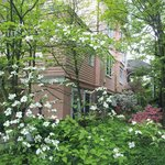 Side of house with delightful shrubs