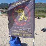 Dragon Kite Flag on the beach in Tarifa