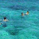 off snorkeling