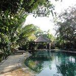 Luscious pool
