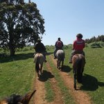 Horseback riding in the countryside then to the beach!