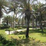 area verde del hotel