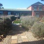 Outeniqua Moon Percheron Stud and Guest Farm Foto