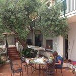 Enjoying breakfast underneath the olive tree