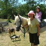 Peacehaven Country Cottages. The kids always enjoy a pony ride