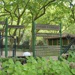 Parque infantil D. Carlos