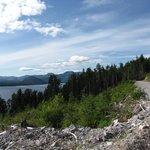 Mountain Logging Road