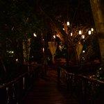 Cenote de noche