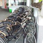 Free Bicycle !!!