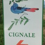 Sign for Cignale
