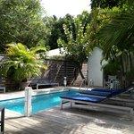 l'espace piscine,solarium tropical et petit déjeuner