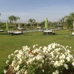 vue de la piscine dans les jardins