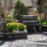 Spring Tullochwood grounds