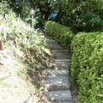 affascinante scalinata