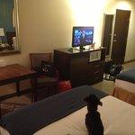 2 queen room -- pet friendly