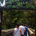 Entrance to Swamp Walk