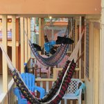 Hammocks in fromt of every room