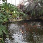 Manor Heath and Jungle Experience