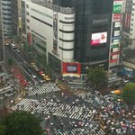 lively city