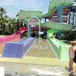 Some of the smaller water slides perfect for the younger children
