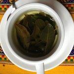 Coca tea at Casa de Mama