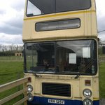 The double decker bus which was a hit, you can go upstairs and its in good condition